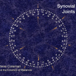 Synovial Joints CD Cover